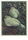 Theo van Hoytema 1863-1917  -  Twee duiven - Postkaart -  A9091-1