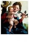 Jan van Scorel (1495-1562)  -  Madonna wilede - Postkaart -  A9154-1