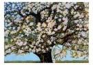 Charlie Toorop (1891-1955)  -  Bloeiende Boom - Postkaart -  A9219-1