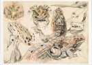 Martin Monnickendam (1874-1943 -  Studie van Krokodil en padden - Postkaart -  A9423-1