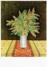Sal Meijer (1877-1965)  -  Mimosa, ca. 1929 - Postkaart -  A9723-1