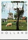 Igno Cuypers  -  Washline, Holland - Postkaart -  AU0795-1