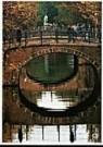 Igno Cuypers  -  Reguliersgracht, Amsterdam: looking towards Thorbe - Postkaart -  AU1038-1