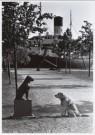 Rolf Adlercreutz  -  Dog meets dog - Postkaart -  B0182-1