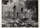 Sem Presser (1917-1986)  -  Kastanjes rapen, Sarphatipark, Amsterdam - Postkaart -  B1900-1