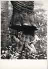 John Drysdale  -  Untitled - Postkaart -  B2534-1
