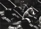 Marco Borggreve (1965)  -  Radio Philharmonisch Orkest  1 - Postkaart -  B2662-1