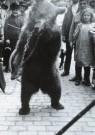 A. Bijnen (1870-1938)  -  Zigeuner met beer in de Ginnekenstraat, Breda, jul - Postkaart -  B2851-1