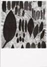 Paul den Hollander (1950)  -  Hortus Siccus III # 5 - Postkaart -  B2866-1