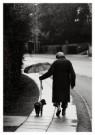Finn Frandsen  -  De mens zorgt voor de hond - Postkaart -  B3019-1