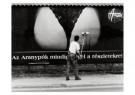 Miklos Teknos  -  Bill-Sticker in Budapest, Nepszabadsag - Postkaart -  B3020-1