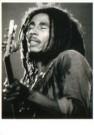 Gert de Ruijter (1954)  -  Bob Marley - Postkaart -  B3161-1