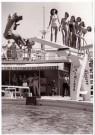 Spaarnestad Fotoarchief,  -  Fotograaf valt van duikplank - Postkaart -  B3249-1