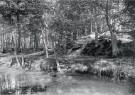A.J.Bonda (1872-1928)  -  De hofvijver bij de Kattenberg, Bergen (NH) - Postkaart -  B3507-1