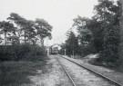 A.J.Bonda (1872-1928)  -  Halte Sparrenlaan, Bergen (NH), stroomtram - Postkaart -  B3509-1