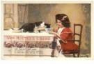 -  Van Houten collectie - Postkaart -  C10186-1