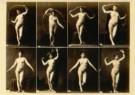 Calavas Freres  -  Studie van vrouw in 8 poses - Postkaart -  C10404-1