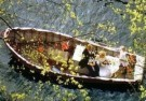 Francis Lake  -  Het huwelijksbootje - Postkaart -  C10980-1