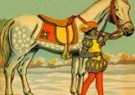 -  Sinterklaas - Postkaart -  C11133-1
