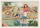 Xin Liliang (1912-?)  -  Nieuwe aanblik van het boerendorp - Postkaart -  C11431-1