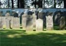 Donald Janssen (1943)  -  Joodse begraafplaats - Postkaart -  C11461-1