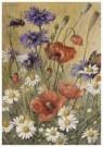 Cornelis Jetses (1873-1955)  -  Schoolplaat van planten en dieren - Postkaart -  C11604-1