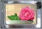 Rolf Unger  -  The Flower (Roses) automatiek - Postkaart -  C11688-1