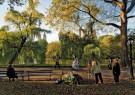 Ronald Arthur van Schaik (1956 -  Central Park, 2009 - Postkaart -  C12061-1