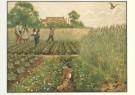 Cornelis Jetses (1873-1955)  -  Het volle leven: 'Junimorgen in de bouwlanden' - Postkaart -  C3659-1