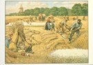 Cornelis Jetses (1873-1955)  -  Het volle leven: 'Een julidag op het land' - Postkaart -  C3660-1