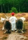 Ruud Binkhorst  -  Alle kinderen - Postkaart -  C4047-1