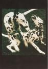 Yani, - Zonder titel - Postkaart - C4445-1