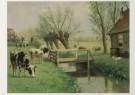 M.A. Koekkoek (1873-1944)  -  Herkauwers - Postkaart -  C4766-1