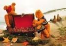 Mirja de Vries  -  Season Bears No.8 - Postkaart -  C5078-1