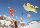 Theo van Houts  -  T.v.Houts/Zwitserland, D'Oex - Postkaart -  C6134-1