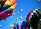Mark Downey  -  Array of Colour - Postkaart -  C6906-1