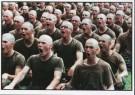 J.Torgovnik (1969)  -  J.Torgovnik/Marines boot camp - Postkaart -  C7100-1