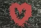 Mirja de Vries  -  Bleeding heart II - Postkaart -  C7379-1