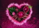 Mirja de Vries  -  Flowerhearts III - Postkaart -  C7383-1