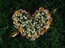 Mirja de Vries  -  Flowerhearts IV - Postkaart -  C7384-1
