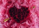 Mirja de Vries  -  From the series 'Flowerhearts' No. 12 - Postkaart -  C7392-1