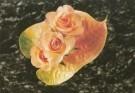 Mirja de Vries  -  Rosae & Anthurium - Postkaart -  C7457-1