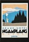 Jan Lavies (1902-2005)  -  Kofferetiket hotel vereniging Java 1928 - Postkaart -  C8547-1