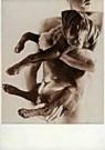 Pieter Bottema  -  Hug Me - Postkaart -  C8561-1