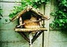 J.Nijkamp  -  Kat in vogelhuisje - Postkaart -  C8594-1