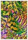 Andre Wieringa  -  Crystals - Postkaart -  C8721-1