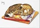 Francien van Westering (1951)  -  Cyperse op boeken - Postkaart -  C9271-1