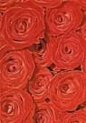Jack Schopman  -  Rode Rozen - Postkaart -  C9293-1