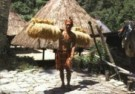 Frans Welman  -  Ifugao, bringing hom - Postkaart -  C9371-1