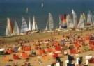 Coquille  -  Enjoy the summer - Postkaart -  C9548-1